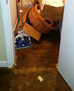 water damage Millersville md